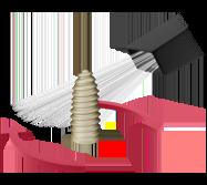 dental implant surface coating