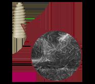 hydroxyapatite dental implant